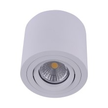 Emithor 48606 - Spot plafond SURFACE 1xGU10/50W/230V