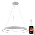 Immax NEO 07079L - Suspension filaire LED à intensité variable LIMITADO LED/39W/230V 60 cm+ télécommande Tuya