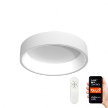 Immax NEO - Plafonnier dimmable LED AGUJERO LED/39W/230V + télécommande