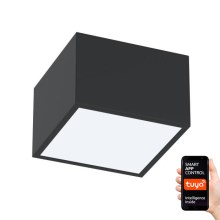 Immax NEO - Plafonnier dimmable LED CANTO LED/12W/230V noir