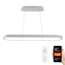 Immax NEO - Suspension dimmable LED HIPODROMO LED/42W/100-240V 30x120 cm