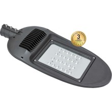 Lampe de rue LED BOSTON LED/100W/230V IP65
