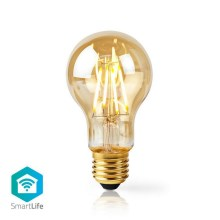 LED Ampoule intelligente dimmable VINTAGE A60 E27/5W/230V