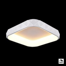 Luxera 18412 - Plafonnier LED à intensité modulable CANVAS 1xLED/50W/230V