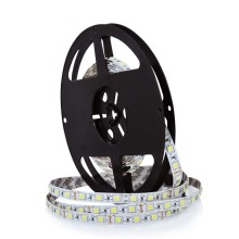 Ruban LED 5m LED/45W/12V IP20 blanc